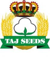 logo_shad_seed